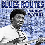 Muddy Waters Blues Routes Muddy Waters
