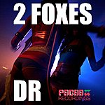 DR 2 Foxes