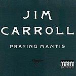 Jim Carroll Praying Mantis