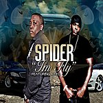 Spider I'm Fly (Feat. Kayo) (Single)