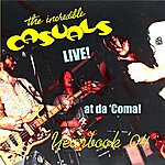 Incredible Casuals Yearbook '04: Live! At Da 'coma! (Radioball #24)