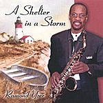 Ramond Yzer A Shelter In A Storm