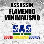 Assassin Flamengo Minimalismo