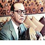 Mohamed Abdel Wahab Toul Omri