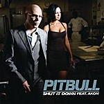 Pitbull Shut It Down (Featuring Akon)(Single)(Parental Advisory)