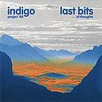 Indigo Last Bits