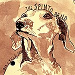 The Spinto Band Did I Tell You (Single)