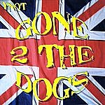 Ynot Gone 2 The Dogs