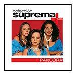 Pandora Coleccion Suprema Plus- Pandora
