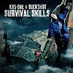KRS-One Survival Skills