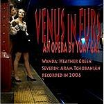 Yoav Gal Venus In Furs