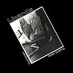 The Lizards Valttikortit (2-Track Single)