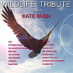 Wild Life A Tribute To The Hits Of Kate Bush