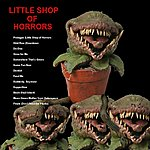 Seymour The Little Shop Of Horrors