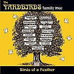 The Yardbirds Birds Of A Feather
