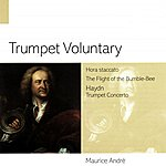 Maurice André Trumpet Voluntary