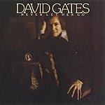 David Gates Never Let Her Go