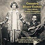 Stefan Grossman Country Blues Guitar