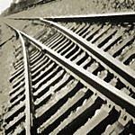 Mike Headrick Steel Rails