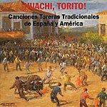 Varios Canciones Toreras Tradiciones De España Y América