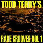 Todd Terry Todd Terry's Rare Grooves Vol I