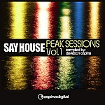 Davidson Ospina Say House - Peak Sessions Vol. 1