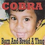 Cobra Born And Bread A Thug
