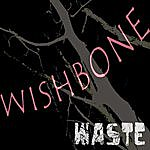 Wish Bone Waste