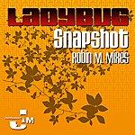 LadyBug Snapshot