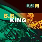 B.B. King Blues Masters Vol. 3(B.b. King)