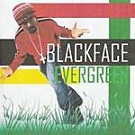Evergreen Blackface