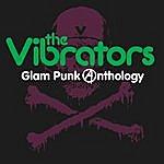 The Vibrators Glam Punk Anthology