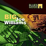 Big Joe Williams Blues Masters Volume 6(Big Joe Williams)