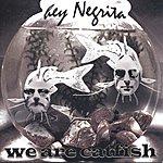 Hey Negrita We Are Catfish