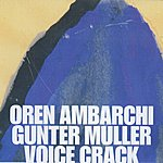 Oren Ambarchi Oystered