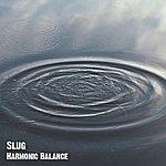 Slug Harmonic Balance