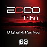 Ecco Tribu (Original & Remixes)