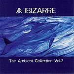 Lenny Ibizarre Ambient Collection Vol. 2