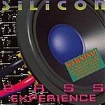Silicon Bass Experience