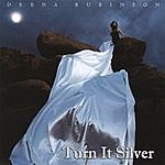 Deena Rubinson Turn It Silver