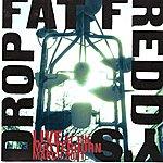Fat Freddy's Drop Live At Matterhorn