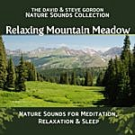 David Gordon Relaxing Mountain Meadow: Nature Sounds For Meditation, Relaxation And Sleep