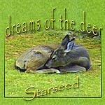 Starseed Dreams Of The Deer