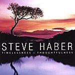 Steve Haber Timelessness | Thoughtfulness