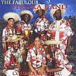 The Fabulous Stroka Band Compilation Disc