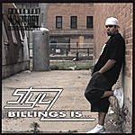 Stylz Billings Is...