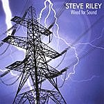 Steve Riley Wired For Sound