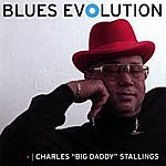 Charles 'Big Daddy' Stallings Blues Evolution