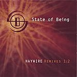 State Of Being Haywire | Remixes 1:2
