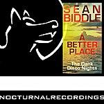 Sean Biddle A Better Place (3-Track Maxi-Single)